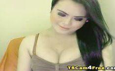 Pau enorme de travesti na punheta na webcam